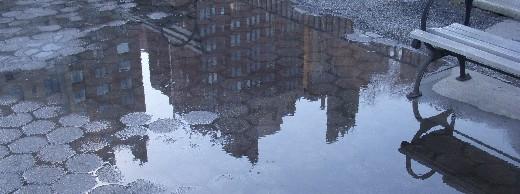 puddlei0225.jpg